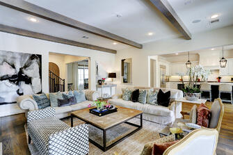 Transitional luxury home living room