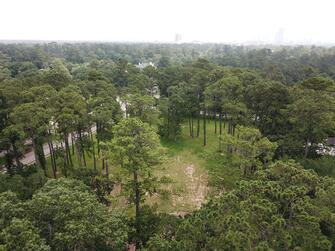 Premier cleared wooded homesite