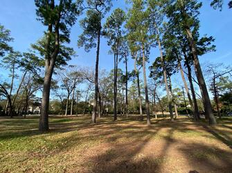 Gorgeous homesite in the heart of Piney Point
