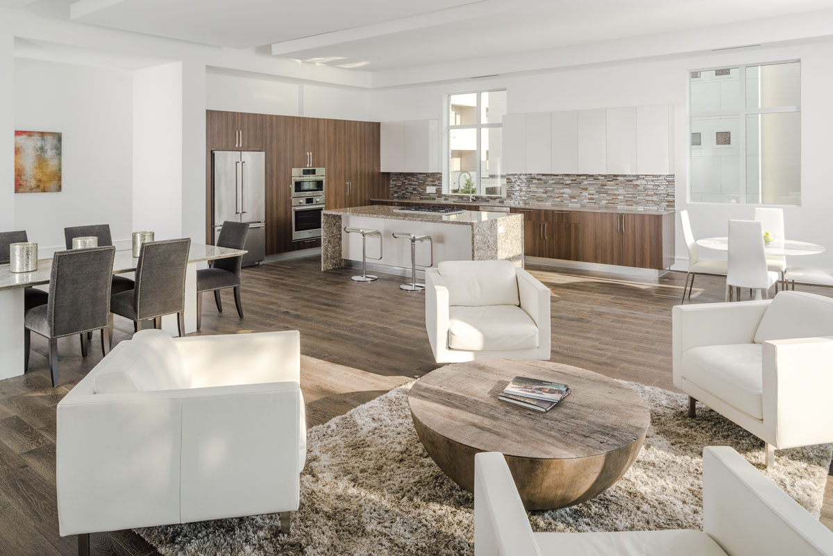 modern townhome builder houston
